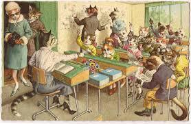 cat class 2